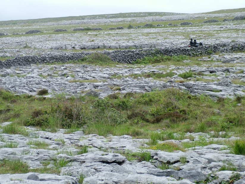 burren stone fences and roadway - burren national park - ireland