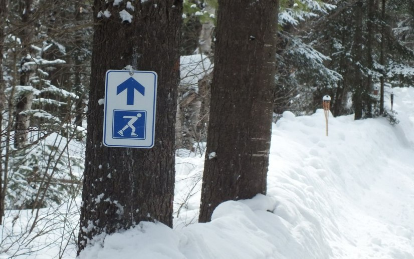 Direction sign on a tree at the ice skating trail at Arrowhead Provincial Park near Huntsville, Ontario, Canada