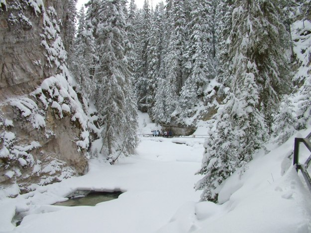 johnston canyon in winter - banff 3