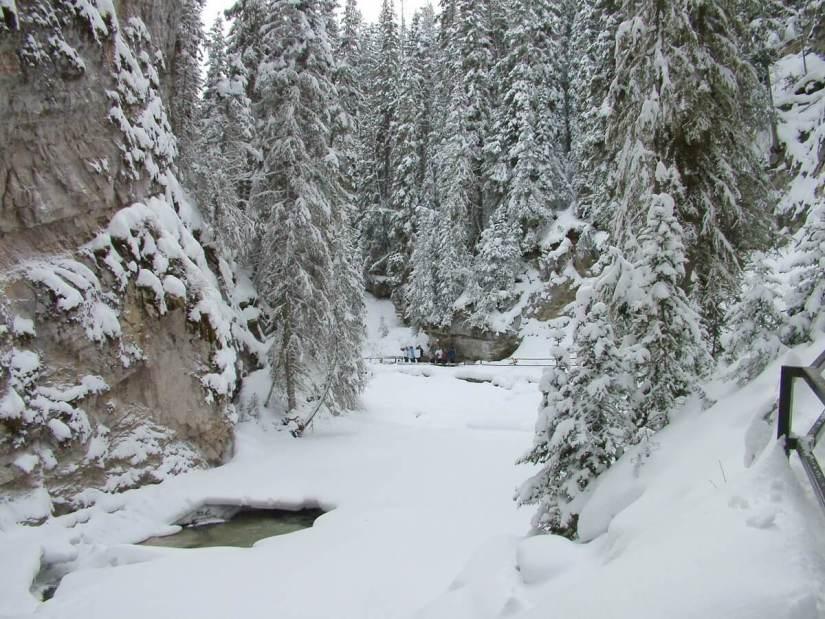 johnston canyon in winter - banff 3