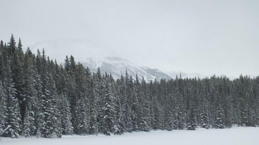 pipestone ski trail winter - banff national park 2