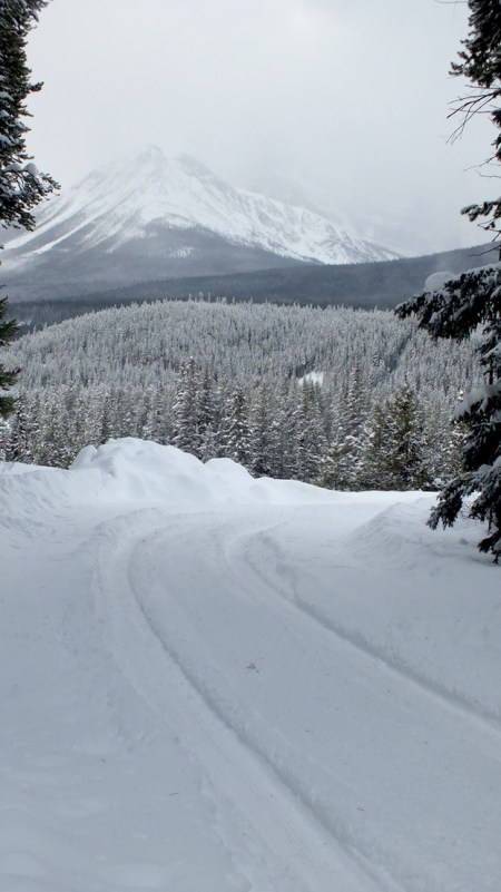 pipestone trail roadway in winter - banff national park