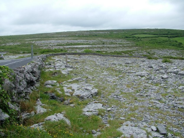 road through the burren in county clare - ireland 2