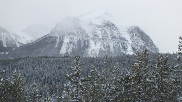 snowstorm in banff national park mountains