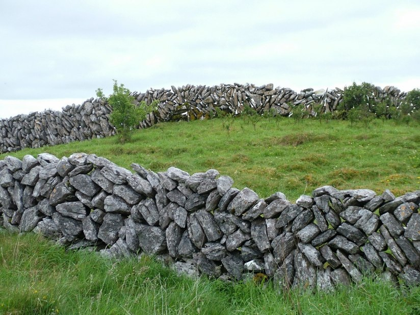 stone fence on the burren - county clare - ireland