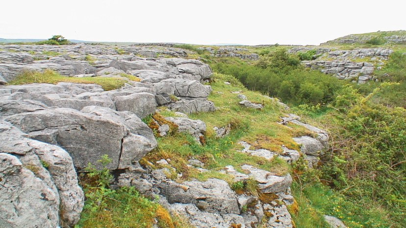 the burren limestone 2