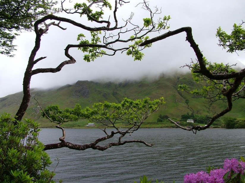 An image of Pollacapall Lough near Kylemore Abbey in County Galway, Ireland. Photography by Frame To Frame - Bob and Jean.