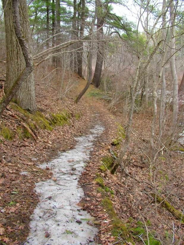 ice on pathway_dickson Conservation area_ontario