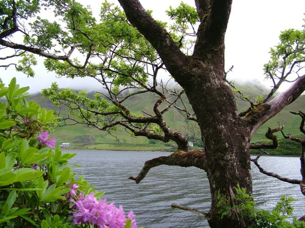 kylemore lough_connemara_ireland