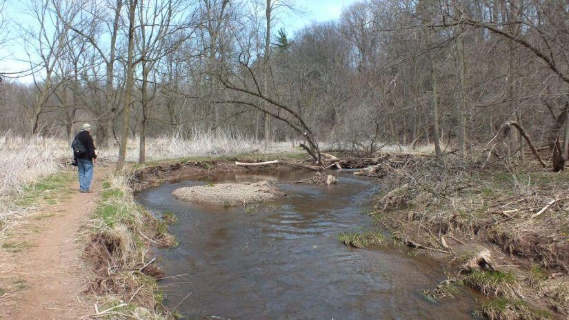 hiking along grindstone creek - hamilton - ontario 2