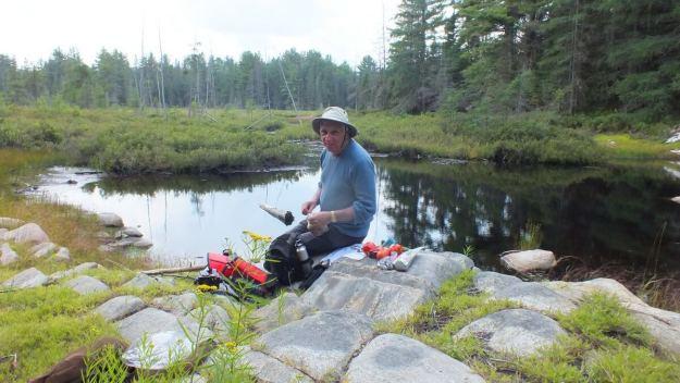 mizzy lake trail - algonquin park - ontario -
