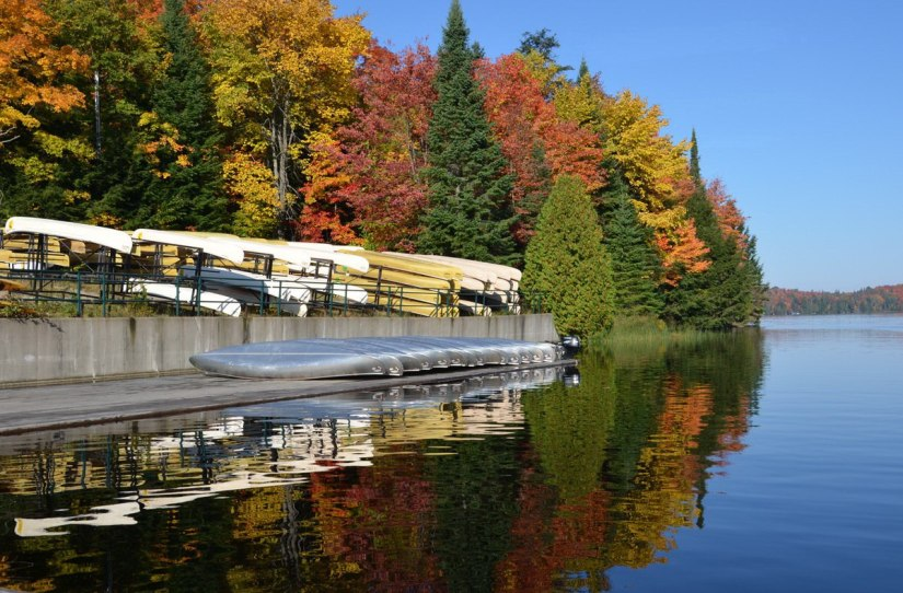 fall colors - canoe lake in algonquin park - fall 2014 - pic 2