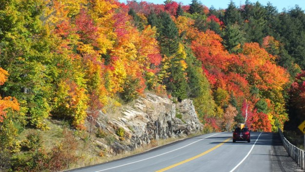 fall colors in algonquin park - fall 2014 - pic 1