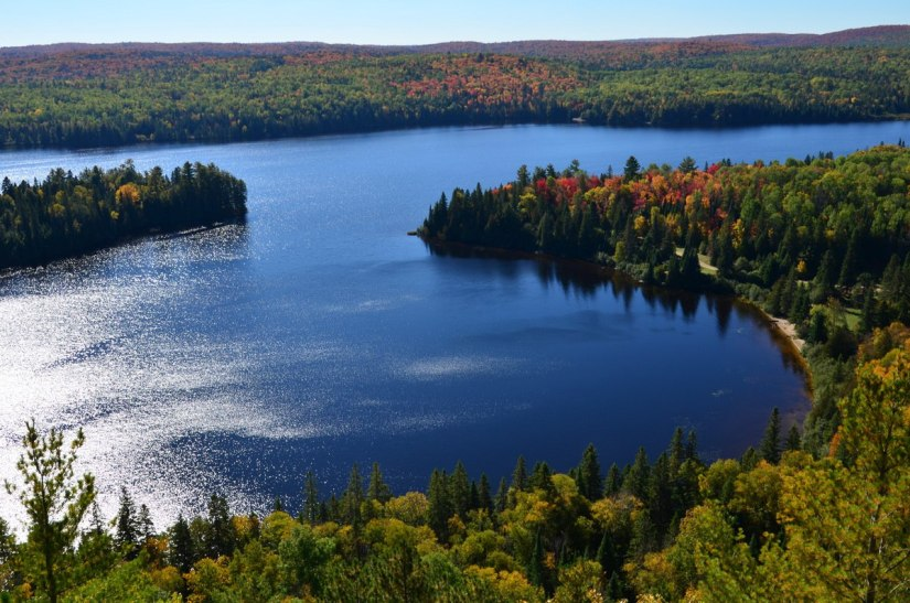 fall colors in algonquin park - fall 2014 - pic 17