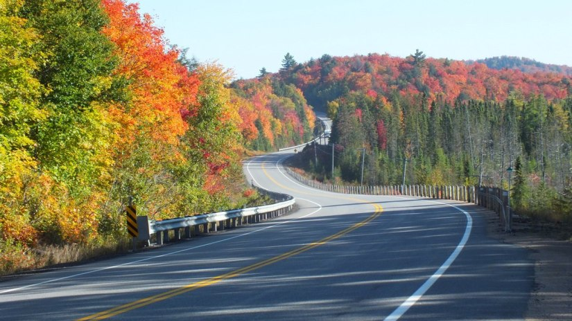 fall colors in algonquin park - fall 2014 pic 28