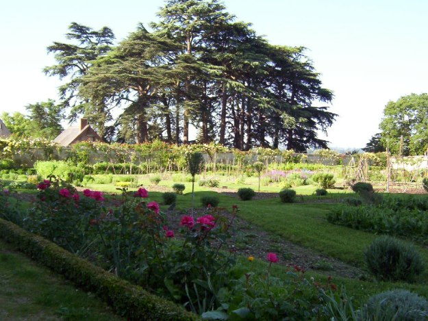 An image of the rose garden at Chateau de la Bourdaisiere in the Loire Valley, France.