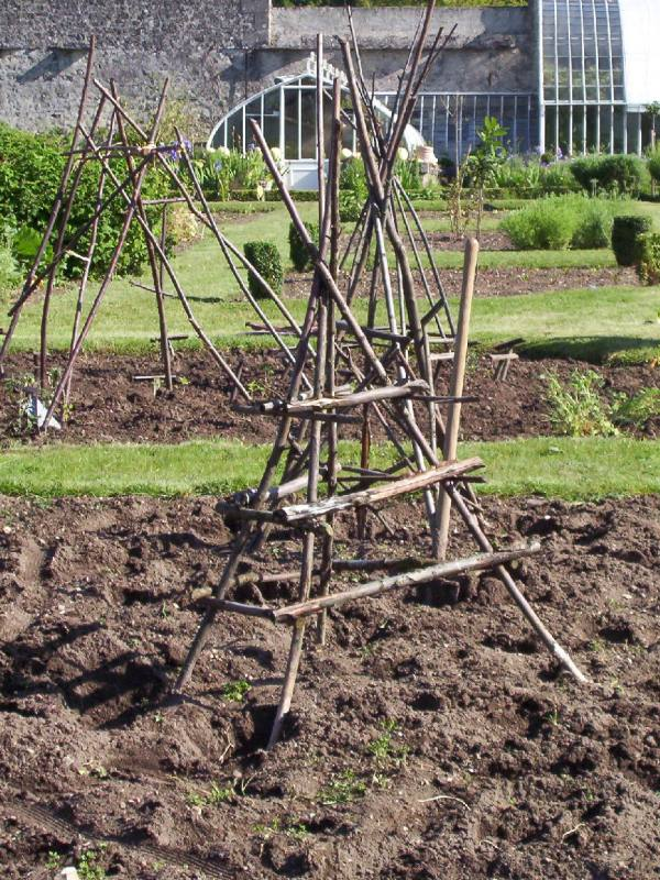 Twig trellis for climbing plants in the garden at Chateau de la Bourdaisiere in the Loire Valley, France | Photography by Frame To Frame - Bob and Jean