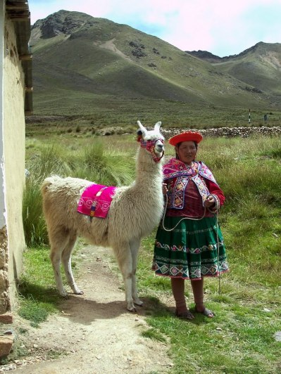 Quechua lady with a Llama at the market at La Raya in Peru, South America