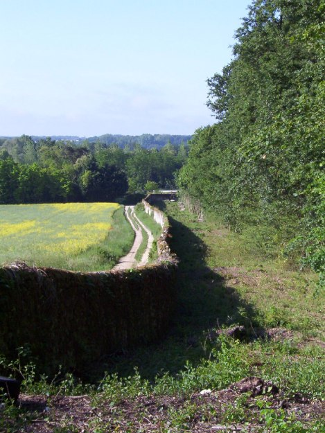 An image of the stone border wall at Chateau de la Bourdaisiere in the Loire Valley, France.