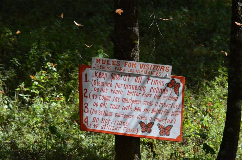 Rules for visitors sign at El Rosario Monarch Butterfly Reserve, in Michoacán, Mexico