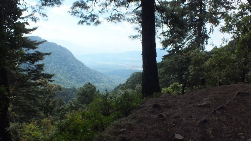 View of valley along the horse trail to the Cerro Pelon Monarch Butterfly Sanctuary, near Macheros, Mexico