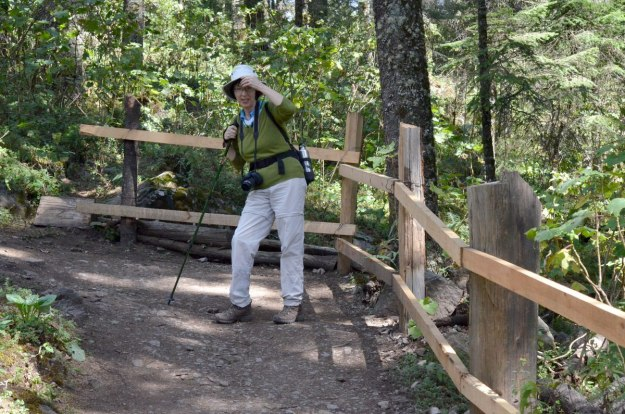 Jean takes break on hiking trail at Sierra Chincua Butterfly Sanctuary near Angangueo, Mexico