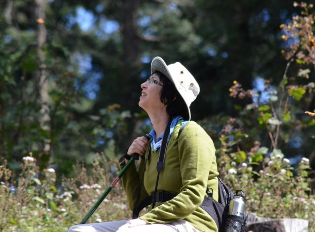 Jean watches the Monarch butterflies in flight at Sierra Chincua Butterfly Sanctuary near Angangueo, Mexico