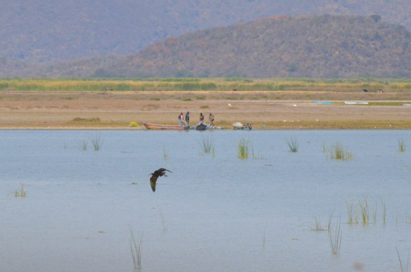 Fishermen on Lago de Cuitzeo, in the Michoacán State, Mexico