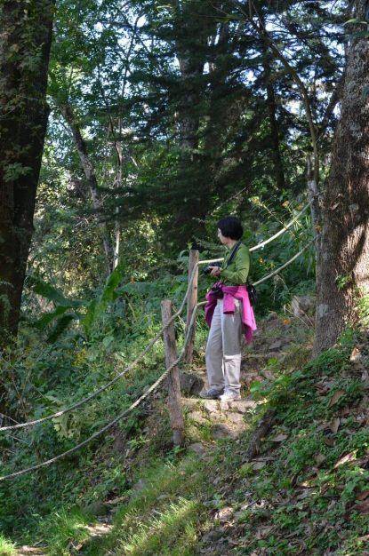 hiking trail at hotel rancho san cayetano, mexico , 3