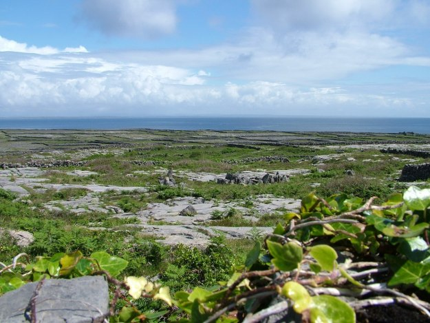 stone walls and fields on inishmore island, aran islands, ireland