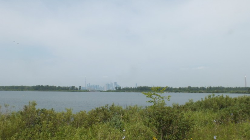 Toronto skyline viewed from Tommy Thompson Park in Toronto, Ontario, Canada