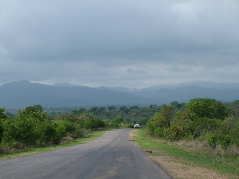 Paved roadway inside Kruger National Park, in South Africa