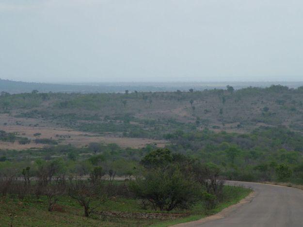 Roadway in Kruger National Park, South Africa