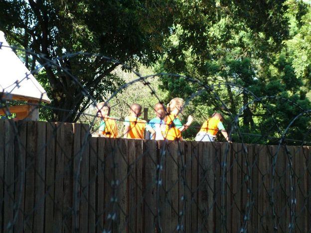 razor wire around school, sabie, south africa, pic 1
