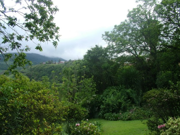 Front garden at Valley View Lodge in Sabie, South Africa
