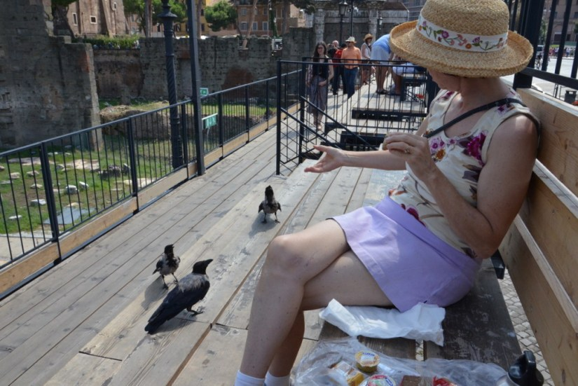 Jean feeding hooded crows at Trajan's Market, in Rome, Italy