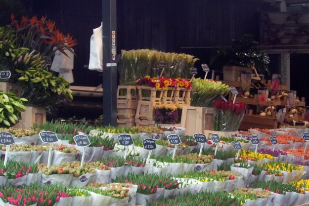 flowers for sale, holland