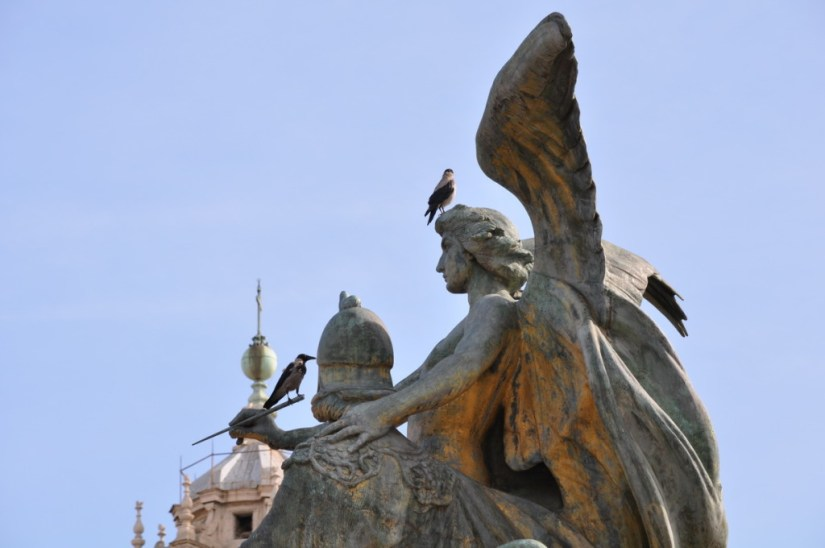 Two hooded crows sitting on a statue at Complesso del Vittoriane in Rome, Italy