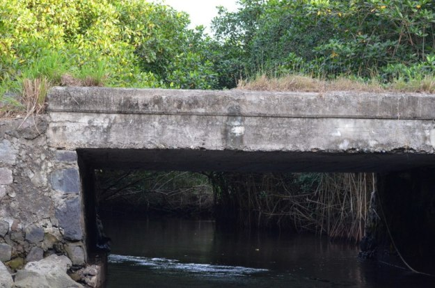 Photo of a channel under a bridge in the mangrove swamp near San Blas, Mexico