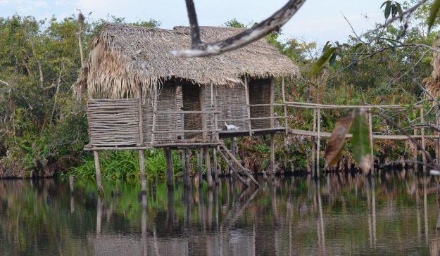 Photo of a hut on stilts at Cabeza de Vaca in the mangrove swamp near San Blas, Mexico
