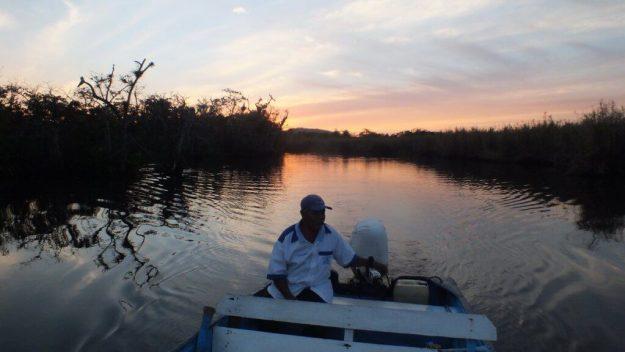Photo of boating at sunset through the mangrove swamp near San Blas, Mexico
