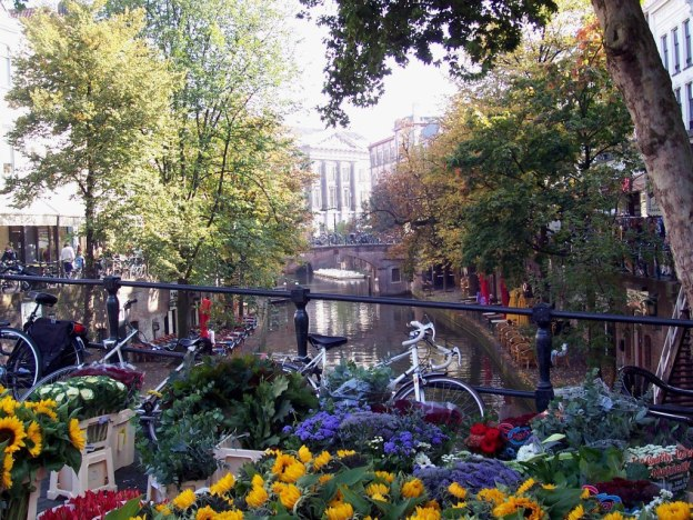 bikes and flowers on a canal bridge in amsterdam, the netherlands