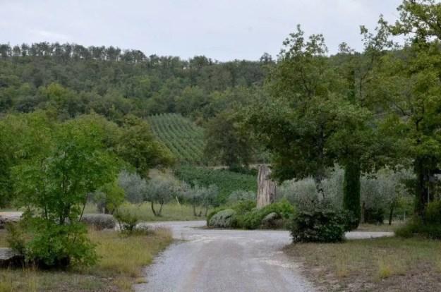 Gravel lane to stone cottage at Il Colombaio di Cencio, Gaiole, Chianti, Tuscany, Italy