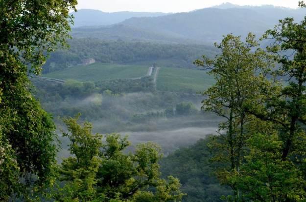 Tuscany countryside near Il Colombaio di Cencio, Gaiole, Chianti, Tuscany, Italy