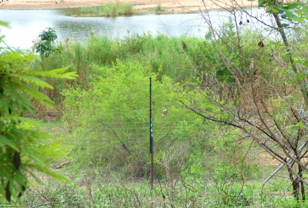 electric-fence-at-lower-sabie-rest-camp-on-the-sabie-river-at-kruger-national-park-south-africa