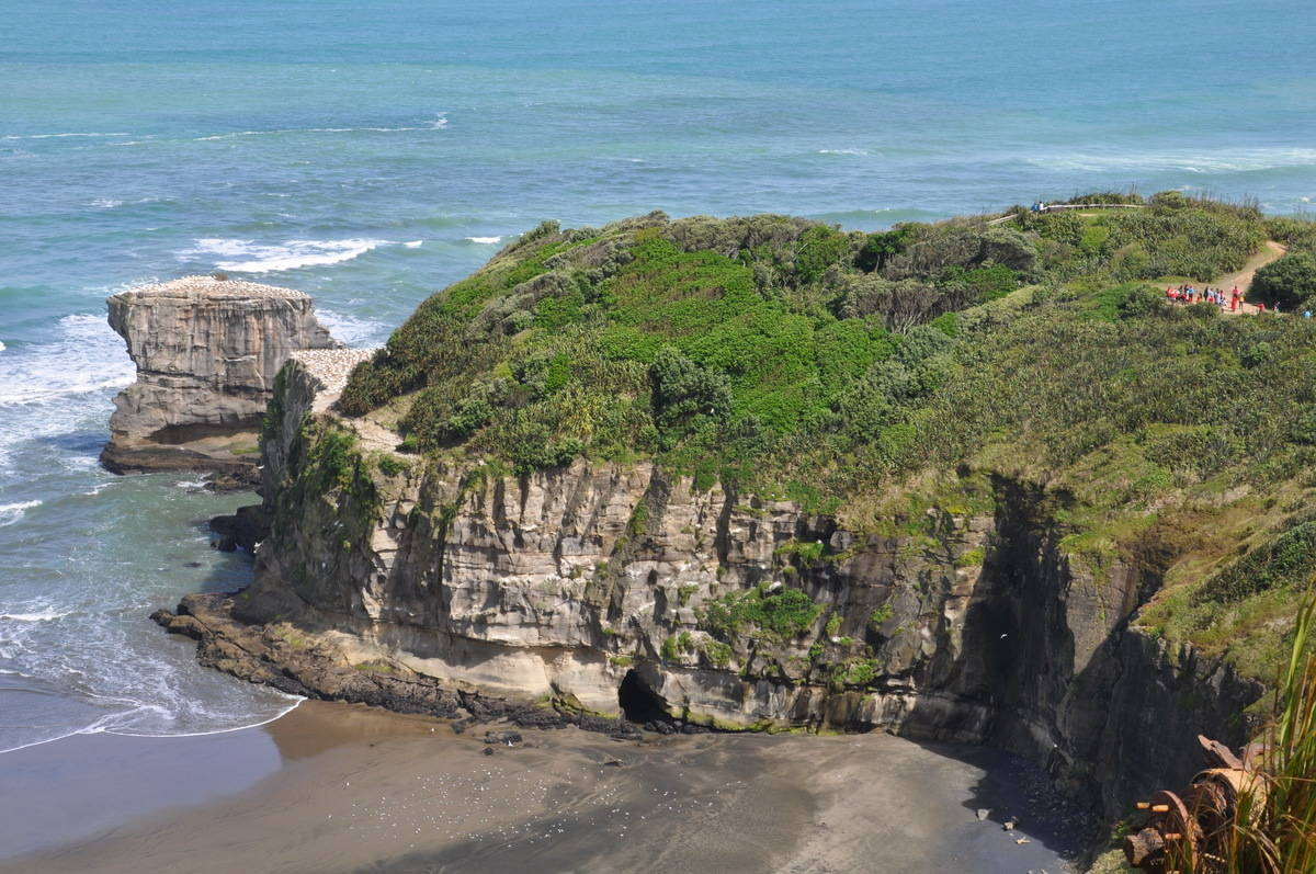 muriwai information Demonstrate comprehensive understanding of how interacting natural processes shape a new zealand geographic muriwai_coastal_geographic_environmentppt: file.