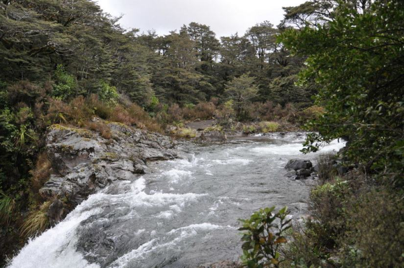 An image of water flowing above Tawhai Falls in Tongariro National Park in New Zealand. Photography by Frame To Frame - Bob and Jean.