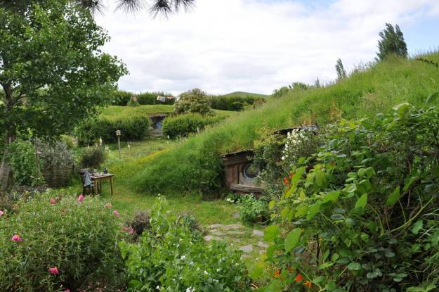 An image of various hobbit holes among green hills at Hobbiton in New Zealand. Photography by Frame To Frame - Bob and Jean.