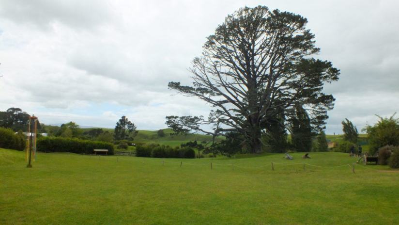 An image of the Party field at Hobbiton in New Zealand. Photography by Frame To Frame - Bob and Jean.