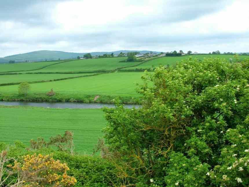 rolling green fields near Wicklow, Ireland